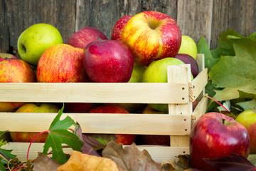 Bio apples in wooden crate