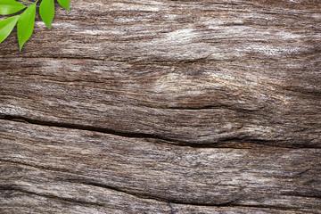 wood background seamless