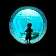 Immersed at the Aquarium