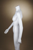 Incomplete female mannequin against brown background poster