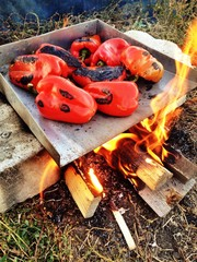 Improvised grill for baking peppers for winter in Romania