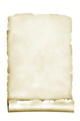 Papierrolle 8