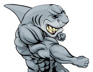 Punching shark mascot