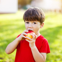 Little preschooler boy eat apple,
