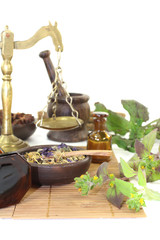 chinesische Medizin mit Pflanzen