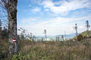 Panoramablick Almenland