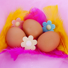 Easter chicken eggs with feathers and flowers