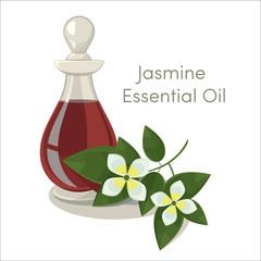 vector jasmine essential oil