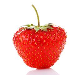 One fresh strawberry standing