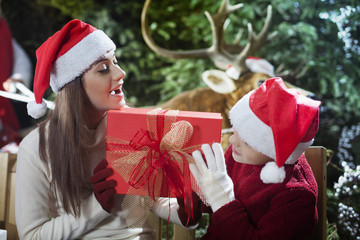 super Christmas with reindeer of Santa Claus