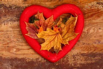 autumn love heart, autumn leaves