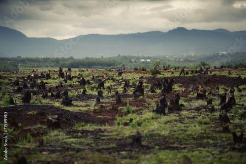 Fotobehang Droogte Madagascar