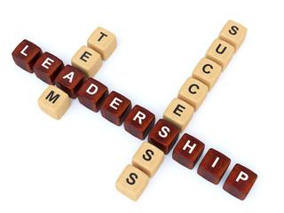 team leadership succes