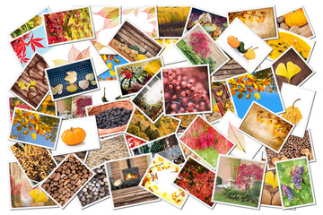 Stack of autumnal photos isolated on white background