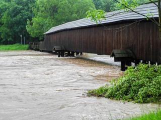 Mulde Hochwasser