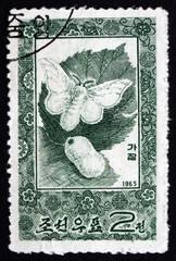 Postage stamp North Korea 1965 Silkworm Moth and Cocoon