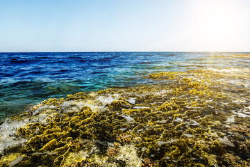 The waves roll on a coral reef in the Red Sea Egypt at dawn