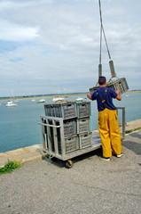 manutentionnaire sur un quai