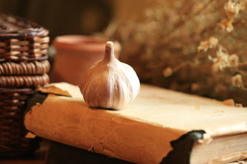 retro old book garlic