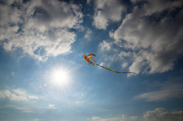 colorful kite