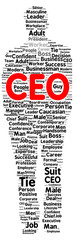 CEO word cloud shape