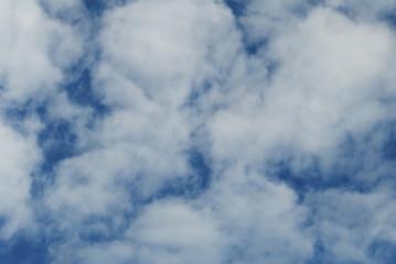 Puffy White Clouds in a Blue Summer Sky
