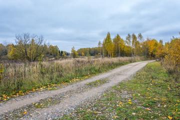 Осенний пейзаж с проселочной дорогой.