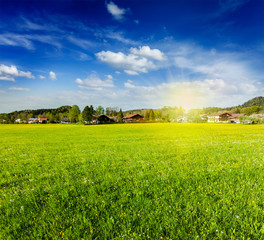 Countryside meadow field with sun and blue sky