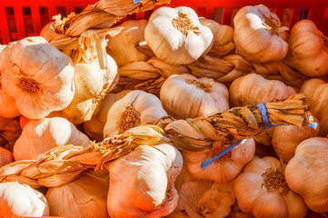 Garlic vegetable