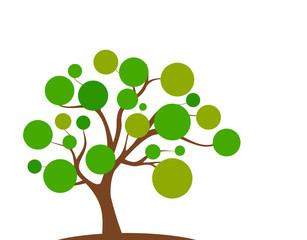 Baum grün Frühling