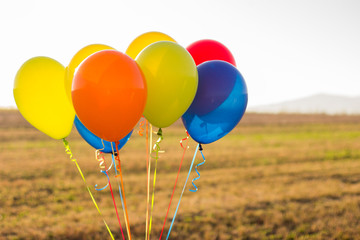colourful balloons and yellow field