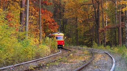 Tram leaves from the autumn forest