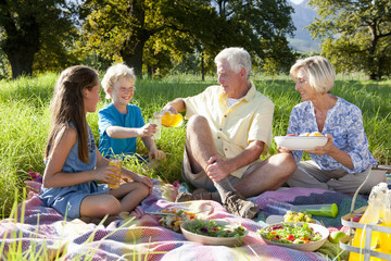 Grandparents and grandchildren having picnic in rural field