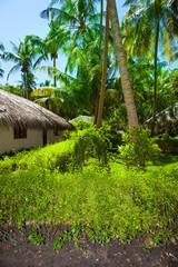 Rest in Paradise - Malediven - Hütte und Palmen auf der Insel