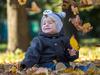 Yellow leaves falling on sitting little boy