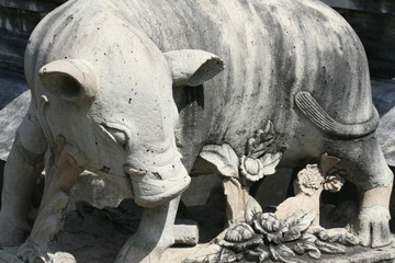 Wat Arun - Temple of the Dawn Pig Statue