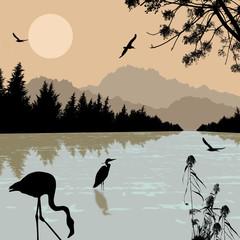 Heron an flamingo silhouettes on river
