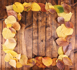Leaves arranged as frame on brown wooden background