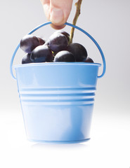 Hand holding small bucket full with grapes