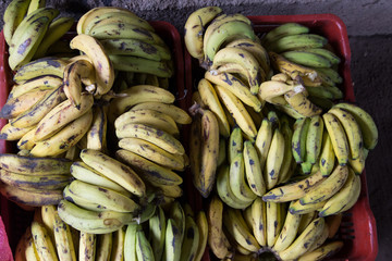 banana group from marketplace in Nicaragua