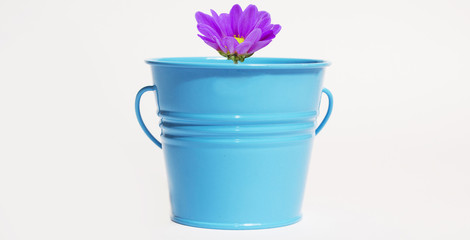 small bucket with a flower inside
