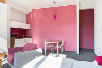 Pink studio house