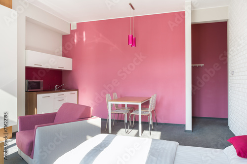 canvas print picture Pink studio house