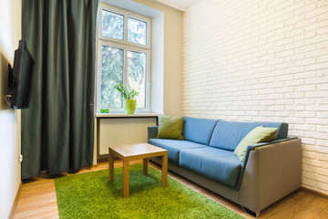 Comfortable couch in small flat