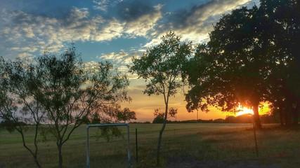Texas pasture sunset