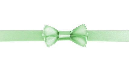 horizontal border with light green color ribbon bow