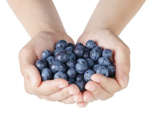 female teen hands holding washed blueberries