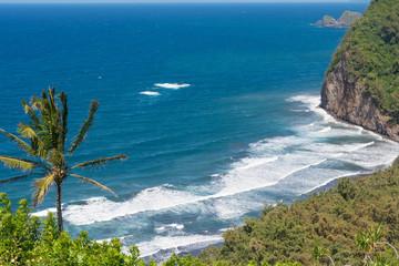 The ocean at Pololu Valley, Hawaii