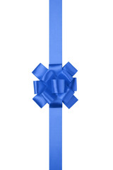 blue vertical big present or award bow with ribbon
