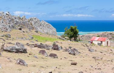 paysage rodriguais, côte est, roche piquant